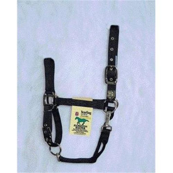 Hamilton Halter Company - Adjustable Chin Halter With Snap- Black Yearling - 1DAS YRBK