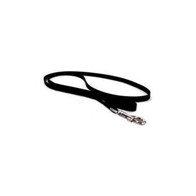 Hamilton Pet Company - Single Thick Nylon Lead- Black 1 X 4 - SLO 4BK
