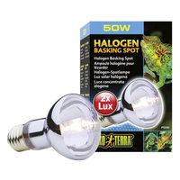 RC Hagen PT2181 Exo Terra Sun-Glo Daylight Halogen Lamp 50W