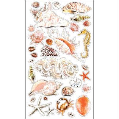 Sticko Classic Sea Shells and Sand Sticker