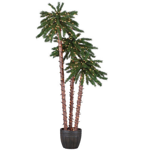 Sterling Inc. Pre-Lit Palm Tree 5' Green Tropical Artificial Christmas Tree with 650 Lights with Pot