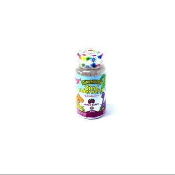 Zinc Elderberry ActivMelt 5 mg Berry Kal 90 Lozenge