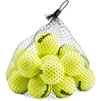 Wilson Pressureless bag of 18: Wilson Tennis Balls
