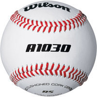 Wilson A1030B High School Baseball (DZN)