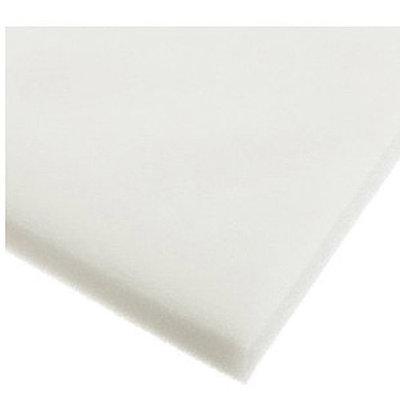 Morning Glory Foam Sheet, 24