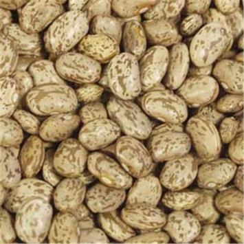Bulk Peas And Beans Organic 100% Organic Pinto Beans 25 Lbs
