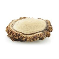 Best Bully Sticks Large Elk Antler Burr - Individual
