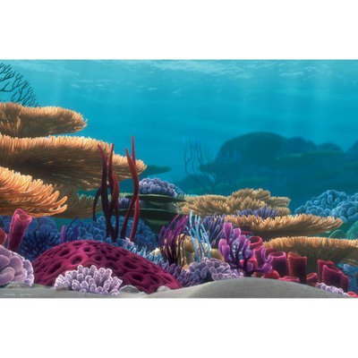 Penn-plax Inc. Penn Plax Finding Nemo 20 gal. Tank Background