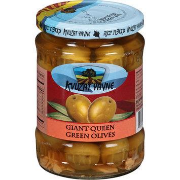 Kvuzat Yavne Giant Queen Green Olives, 11 oz, (Pack of 12)