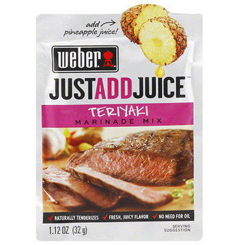 Weber Just Add Juice Teriyaki Marinade Mix, 1.12 oz, (Pack of 12)