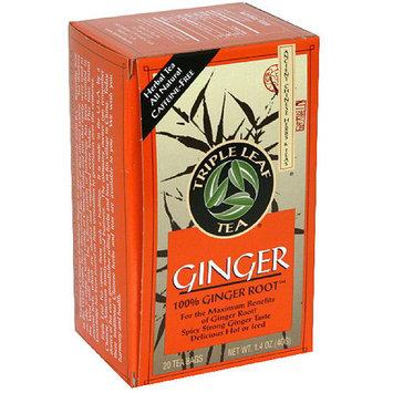 Triple Leaf Tea 100% Ginger Root Tea Bags, 20 count, 1.4 oz, (Pack of 6)