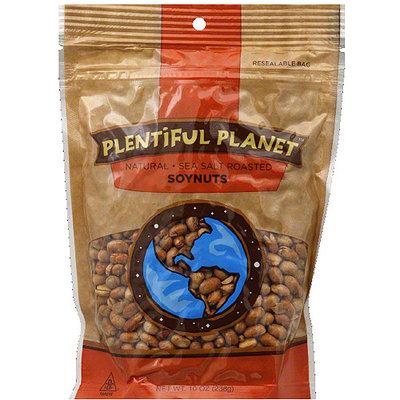 Plentiful Planet Natural Sea Salt Roasted Soynuts, 10 oz, (Pack of 6)