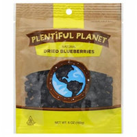 Plentiful Planet Fruit Bluberry Bag 6 OZ (Pack of 6)