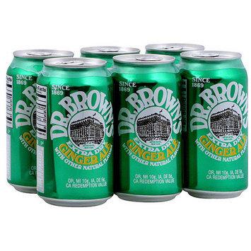 Dr Brown's Dr. Brown's Ginger Ale, 72 oz (Pack of 4)