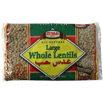 Ziyad Large Whole Lentils, 16 oz (Pack of 6)