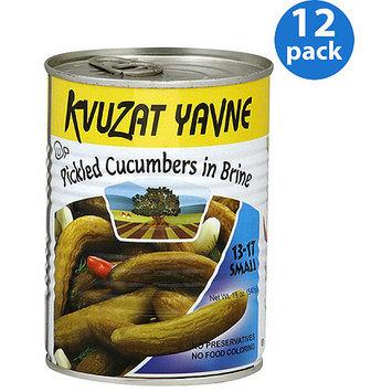 Kuvzat Kvuzat Yavne Pickled Cucumbers in Brine, 19 oz, (Pack of 12)