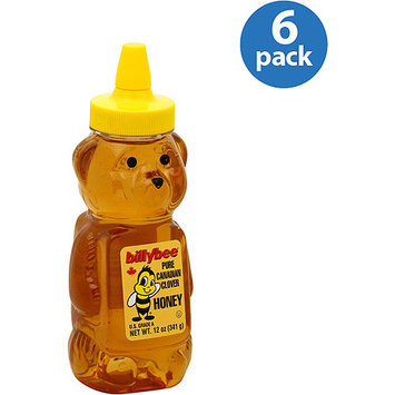 Billy Bee Pure Canadian Clover Honey, 12 oz (Pack of 6)