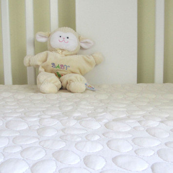 My Little Nest Pebbletex Quilted Organic Cotton Crib Mattress Bed Bug and Anti-Allergy Encasement