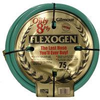 Gilmour Flexogen 3/4-Inch x 75-Foot Garden Hose
