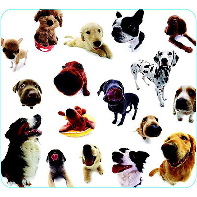 Allsop 29308 Dog Group Mouse Pad