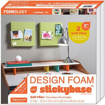 Fairfield Design Foam 12inX12inX2in 2/Pkg-White