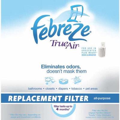 Hamilton Beach 04290G Air Febreeze True Air Filter