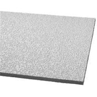 Armstrong World Industries 296372 Random Fiss Plus Sq Lay In