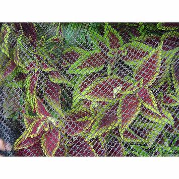 DeWitt 7' x 20' Bird Barricade Protective Plant Netting