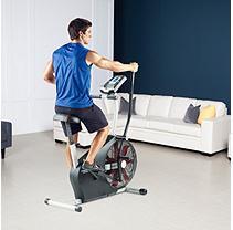 Icon Helath & Fitness Pro-Form XP Whirlwind 320 Exercise Bike