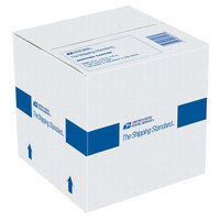 Lepage Products LEPAGE'S INC USPS Shipping Cartons