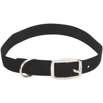 3/4 By 20 Inch Buckle Dog Collar 31420 by Westminster Pet Products