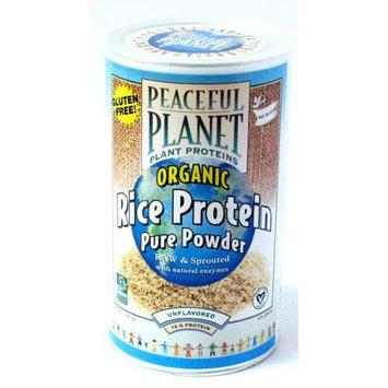 Organic Rice Protein Energy Shake Unflavored VegLife 15.5 oz Powder