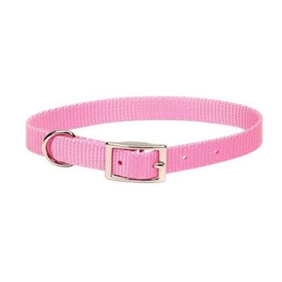 Coastal Pet Single Nylon Collar - 5/8