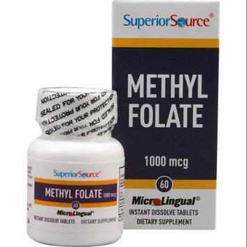 Folic Acid, B6, Chromium & Selenium, 60 Instant Dissolve Tablets, Superior Source