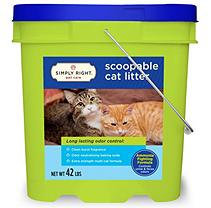 Simply Right Scoopable Cat Litter (42 lbs.)