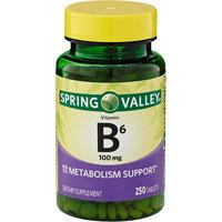 Spring Valley Vitamin B-6 100mg, 250ct