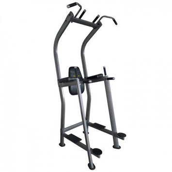Unified Fitness Group Vertical Knee Raise Tower