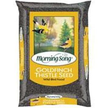 Scotts Company 1022282 Morning Song Thistle Seed 20# Goldfinch Thistle - Bagged