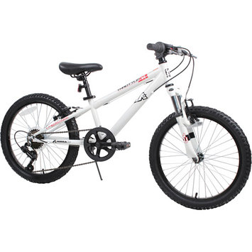 Dave Mirra Throttle 20-in. Mountain Bike - Boys