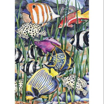 Royal Brush 422071 Mini Colour Pencil By Number Kit 5 in. x 7 in. -Tropical Underwater Life