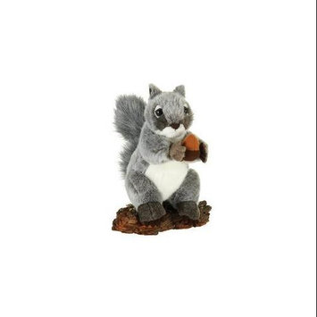 Gray Squirrel with Acorn 9