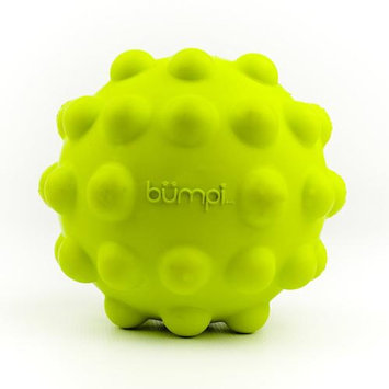 Hueter Toledo Inc. The Bumpy Ball Dog Toy 5.5 Inch