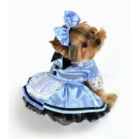 Anit Accessories Anit Extra Large Fantasy Alice Dog Costume