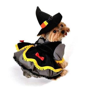Anit Accessories Scarecrow Witch Dog Costume Size: Small (8-12