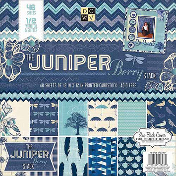 Diecuts With A View Paper Stack 12 X12 48/Pkg-Juniper Berry