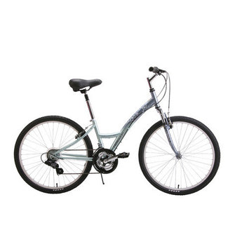Reaction Cycles Women's Northway Comfort Bike Frame Size: 14