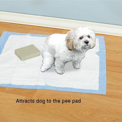 Just Scentsational Here Doggie! Scented Pee Pad Trainer and Attractant