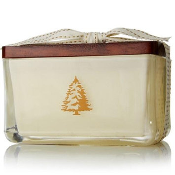 Thymes Frasier Fir Seasonal Poured Candle, 2-Wick