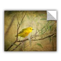 Art Wall Bird On Branch by David Kyle Art Appeelz Removable Wall Art Graphic Size: 18