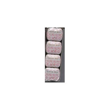 Scripture Candy 548278 Candy Scripture Mints Pocket Tin Cinnamon Sf